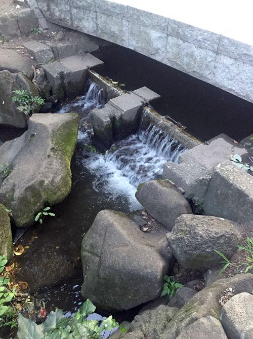 神田川のスタート