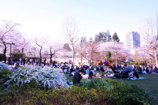 檜町公園 広場