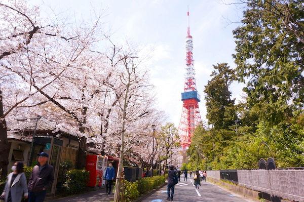東京タワー撮影ポイント