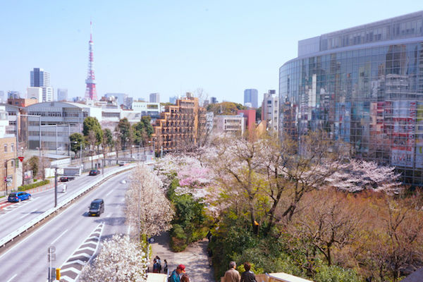 毛利庭園と東京タワー