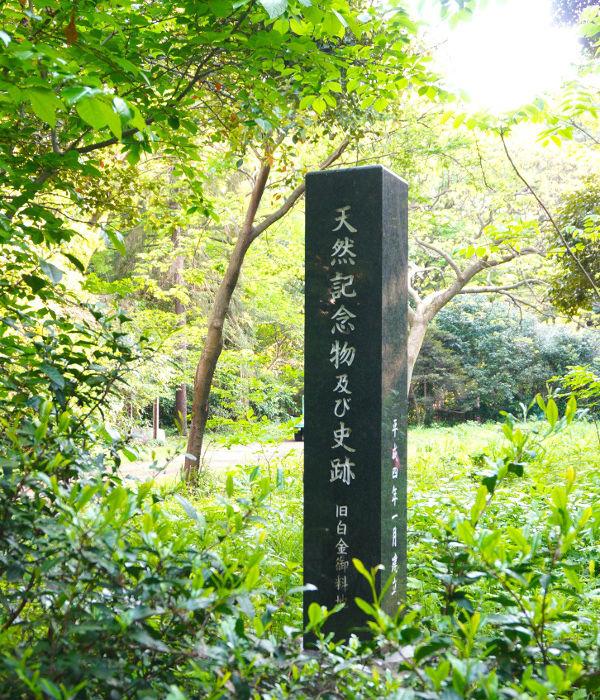 天然記念物及び史跡